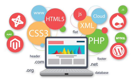 Advantages of Having a Professional Web Design